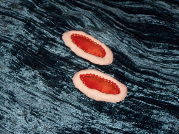 Mes premières tartelettes en tissu